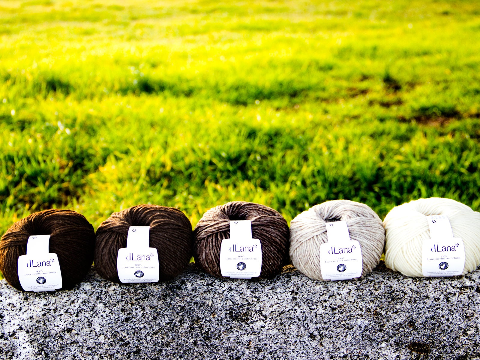 dlana lana merina artesanal
