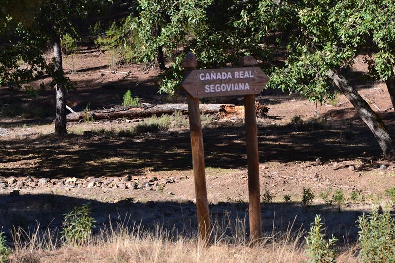 Cañada Real Segoviana Villarta