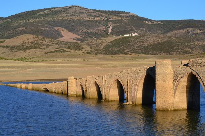 Puente Villarta Trashumancia