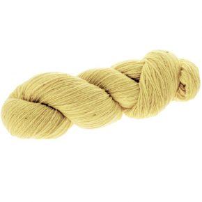 amarillo-campo-colza