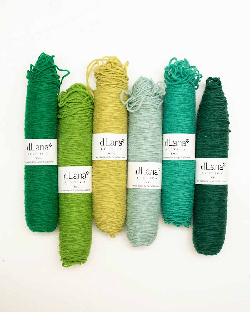 pack-hojas-perennes-canillas-lana-rustica-colores-dlana